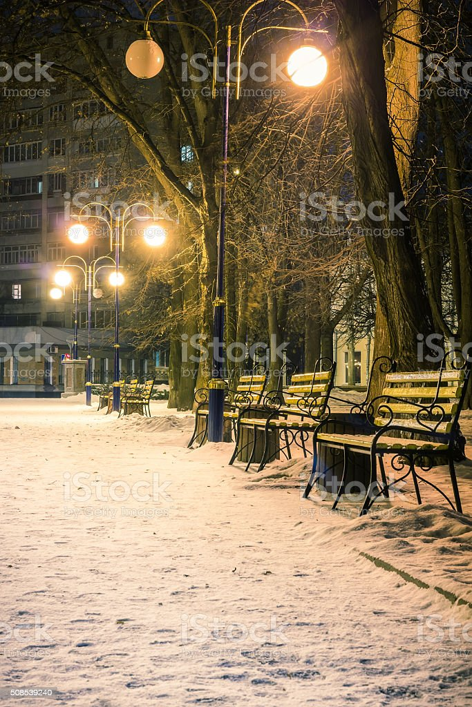 View of alley and benches through snowing, night shot stock photo