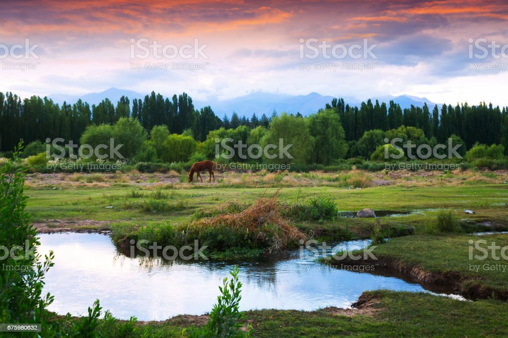 View of Andes mountains from green valley stock photo