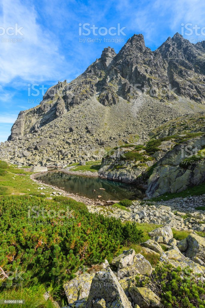 View of beautiful alpine lake in summer landscape of Starolesna valley, High Tatra Mountains, Slovakia stock photo