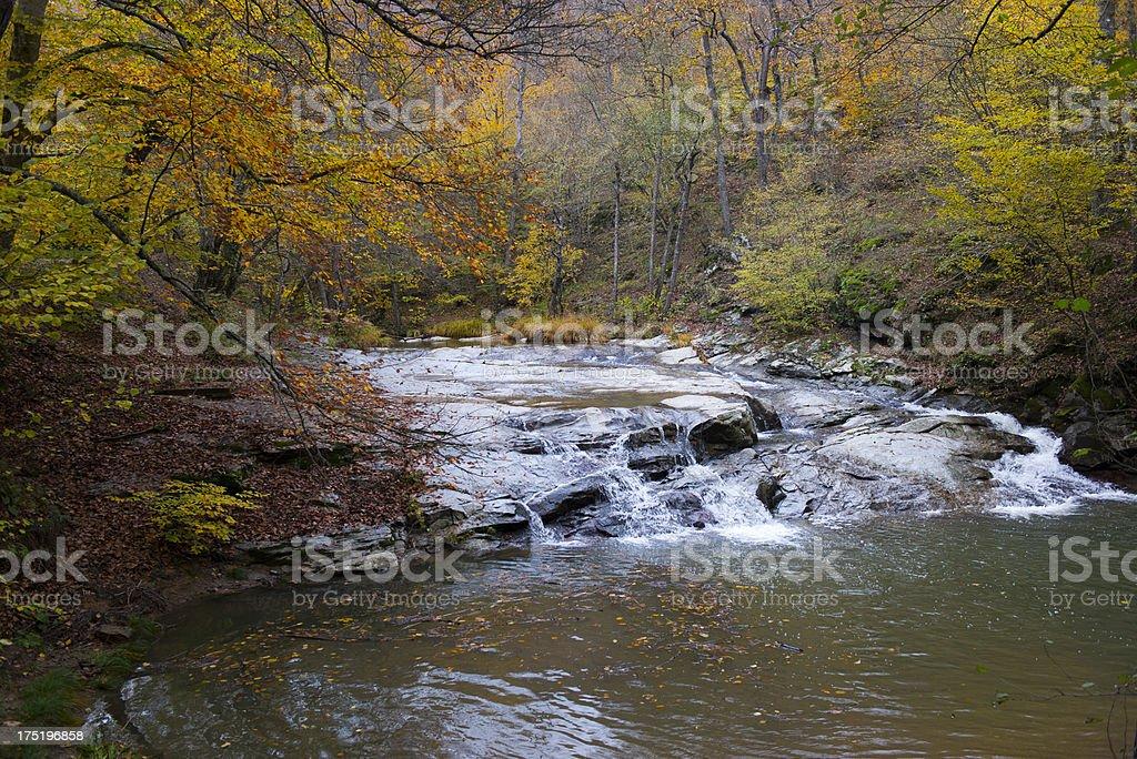 View of beautiful creek during the autumn time, Igneada, Turkey royalty-free stock photo