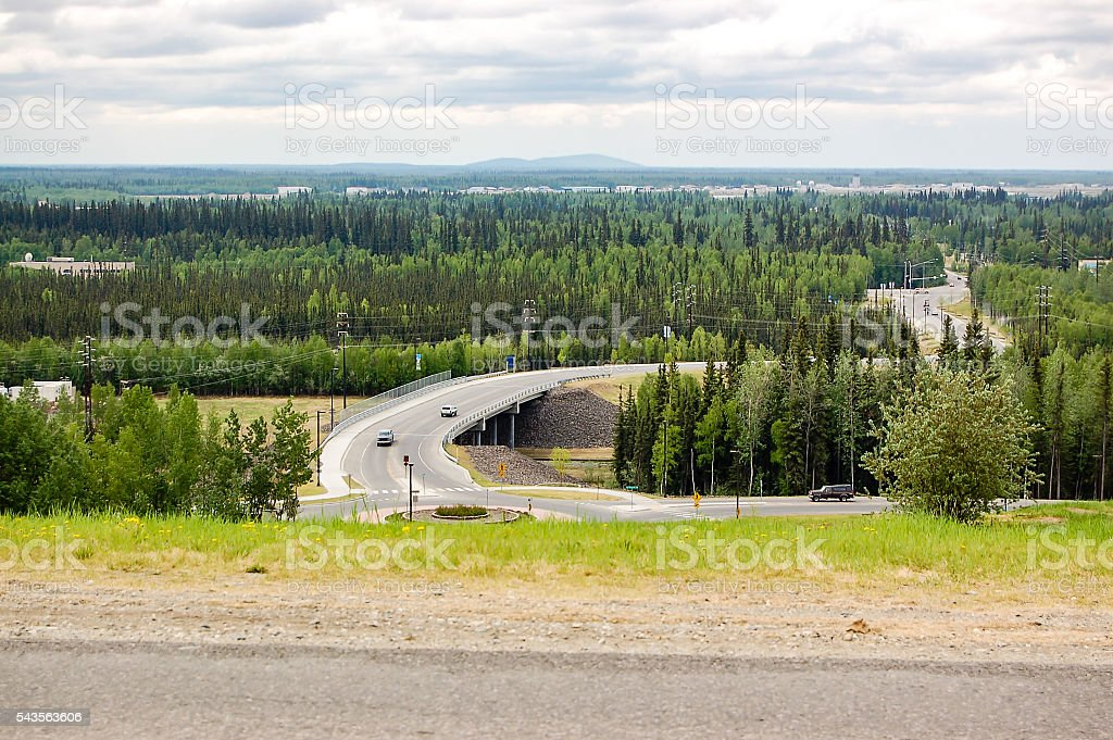 View of boreal forest of Fairbanks stock photo