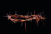 view of branches of thorns woven into a crown
