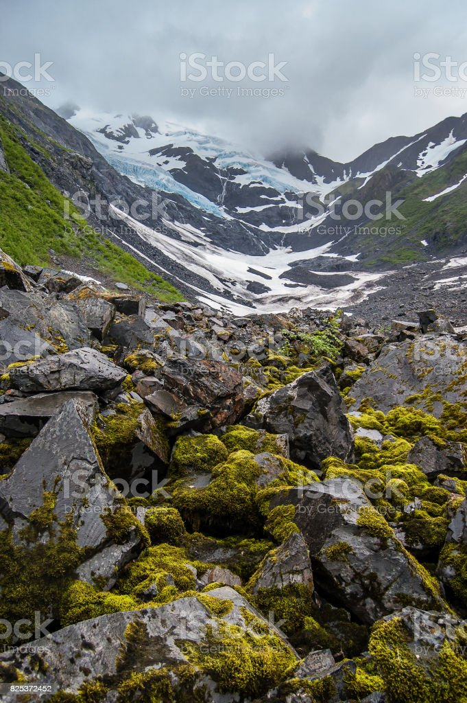 View of Byron Glacier with massive rocks in the foreground stock photo