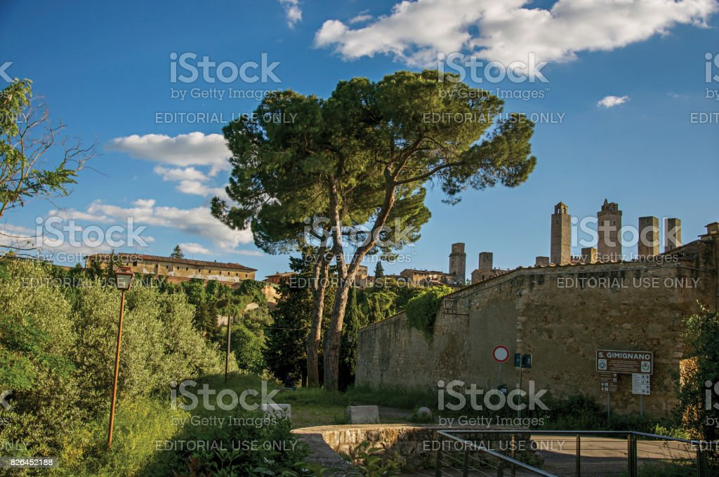 View of city walls and towers with trees at the sunset in San Gimignano. stock photo
