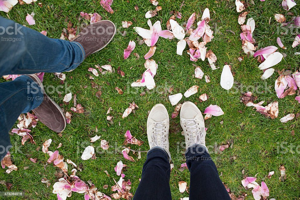 View of couple's feet walking amongst magnolia blossoms stock photo
