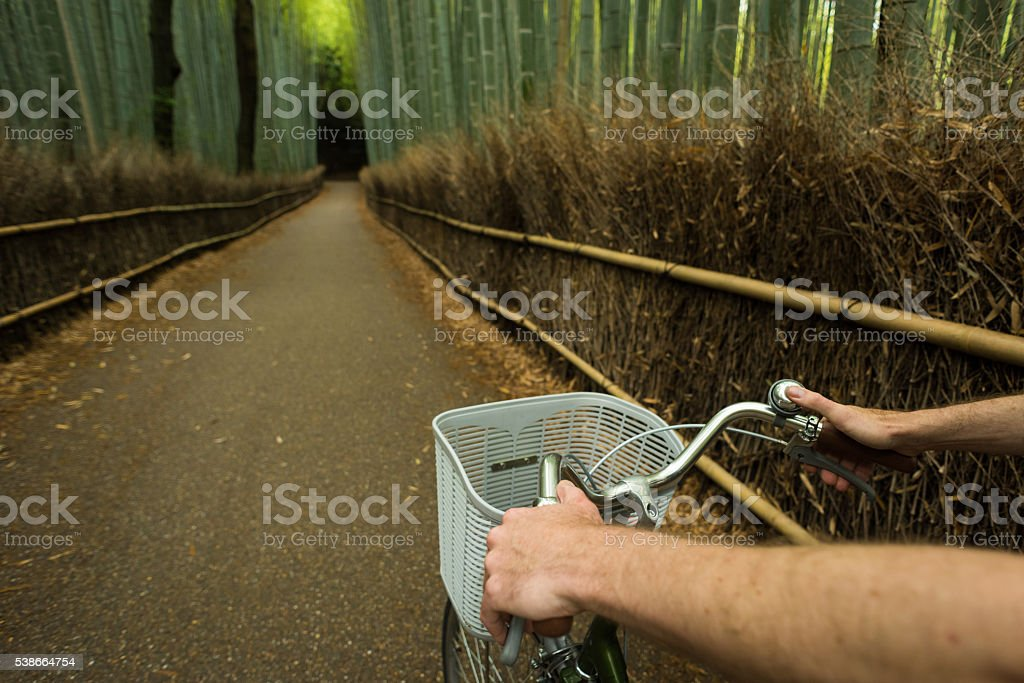 POV view of cycling in a bamboo forest stock photo