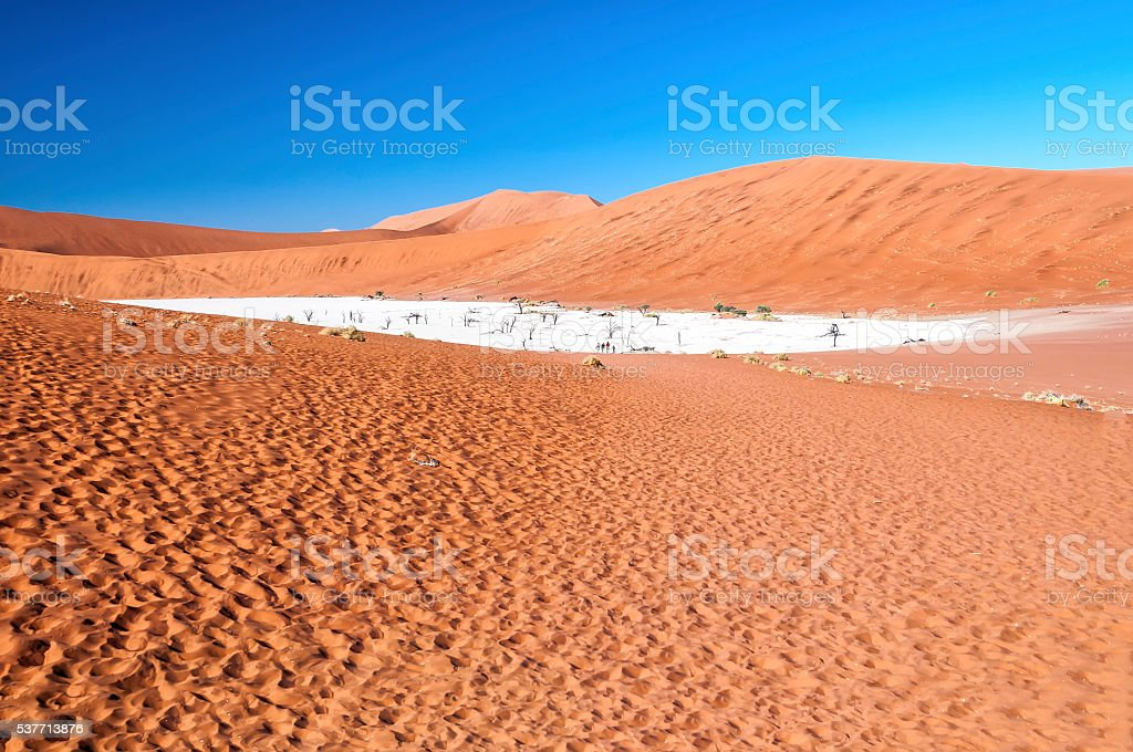 View of Deadvlei in early morning, Namibia stock photo