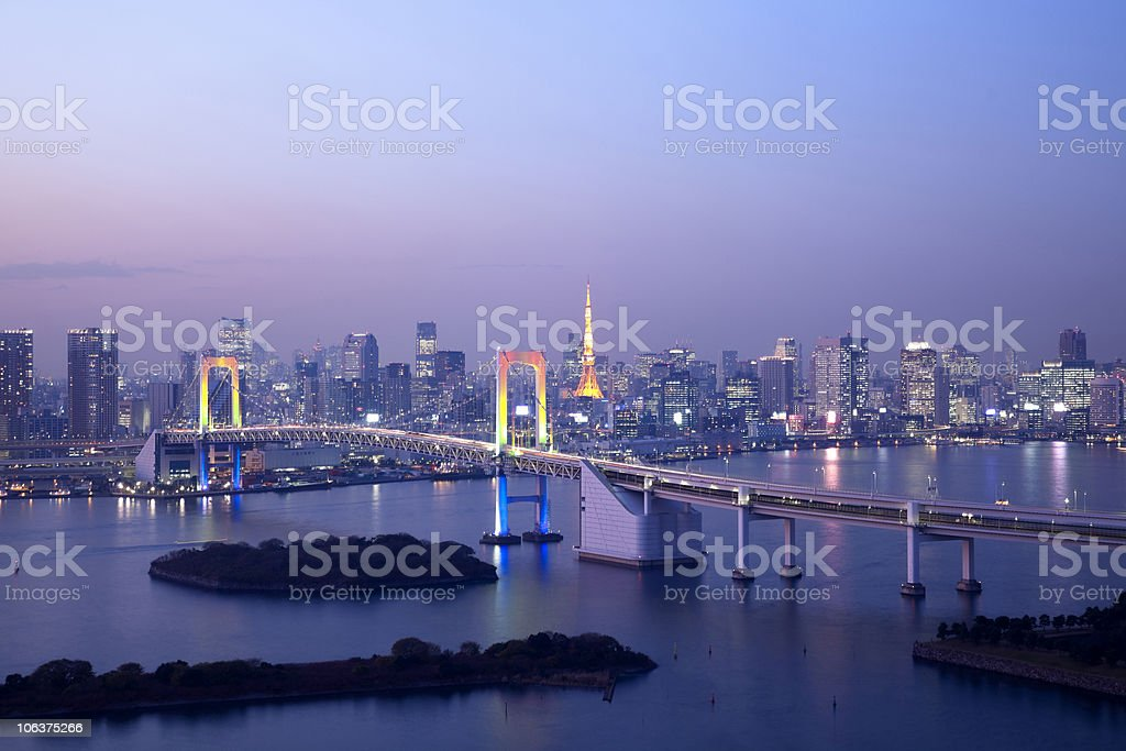View of downtown Tokyo at night with Tokyo-tower royalty-free stock photo