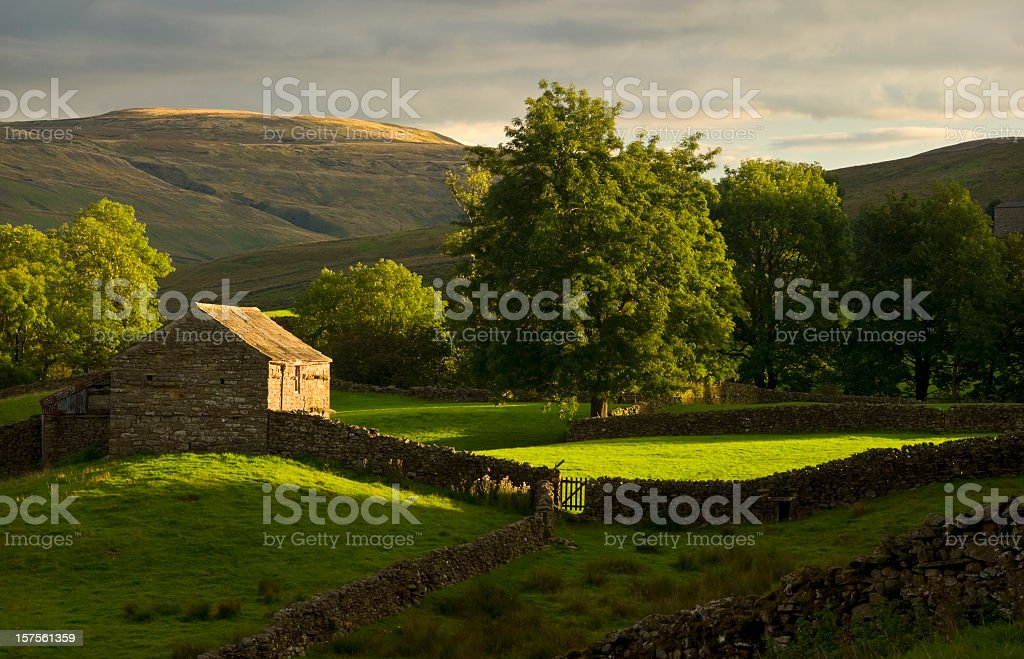 View of farmland hills in Swaledale, Yorkshire stock photo