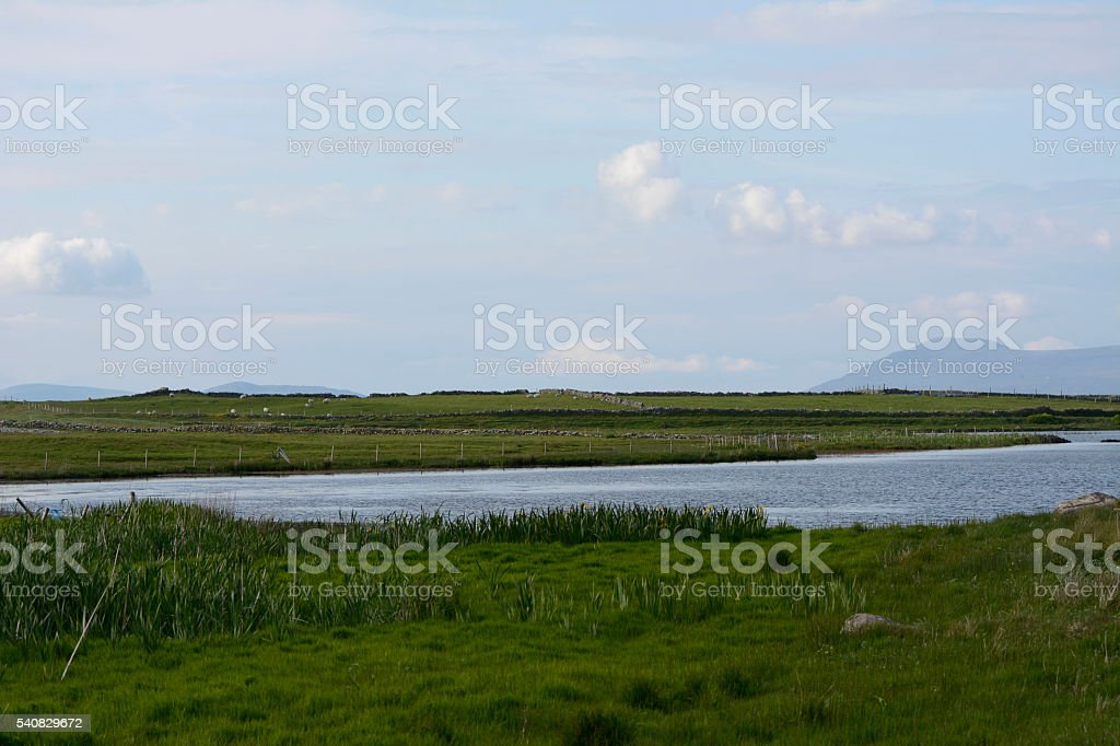 View of fields in Co. Mayo, Ireland stock photo