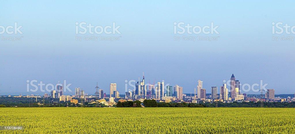 view of Frankfurt skyline with fields royalty-free stock photo