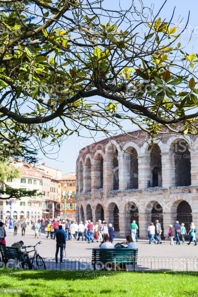 view of green tree branch and roman Arena stock photo