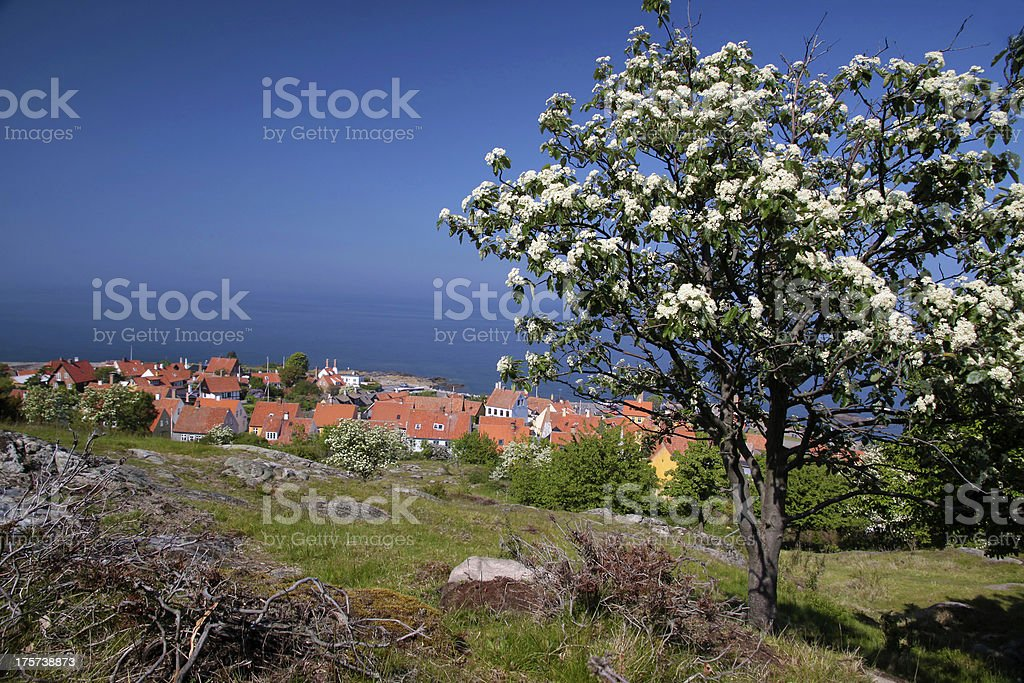 View of Gudhjem on Bornholm stock photo