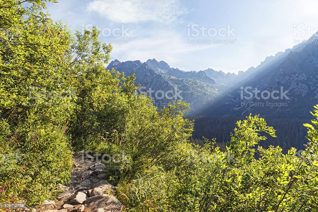 View of High Tatra Mountains from hiking trail. royalty-free stock photo