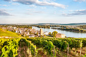 View of homes, vineyards, and lake in Reudesheim, Germany