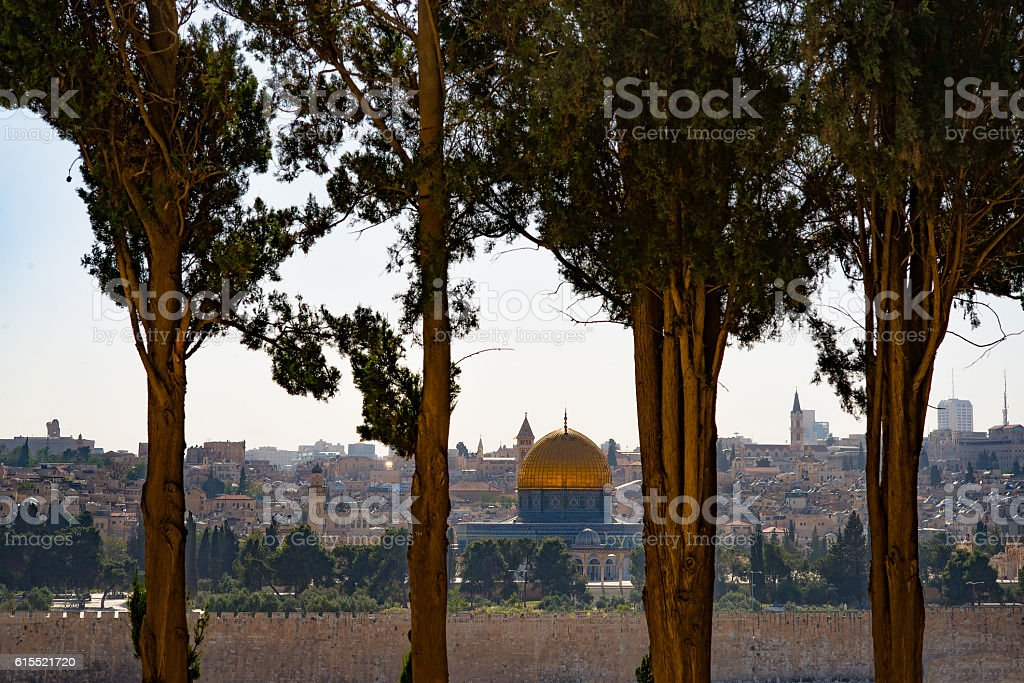View of Jerusalem through the trees stock photo