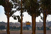 View of Jerusalem through the trees