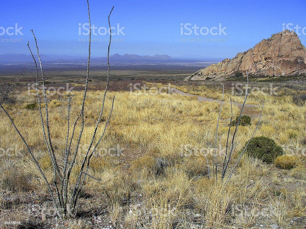 View Of Las Cruces stock photo