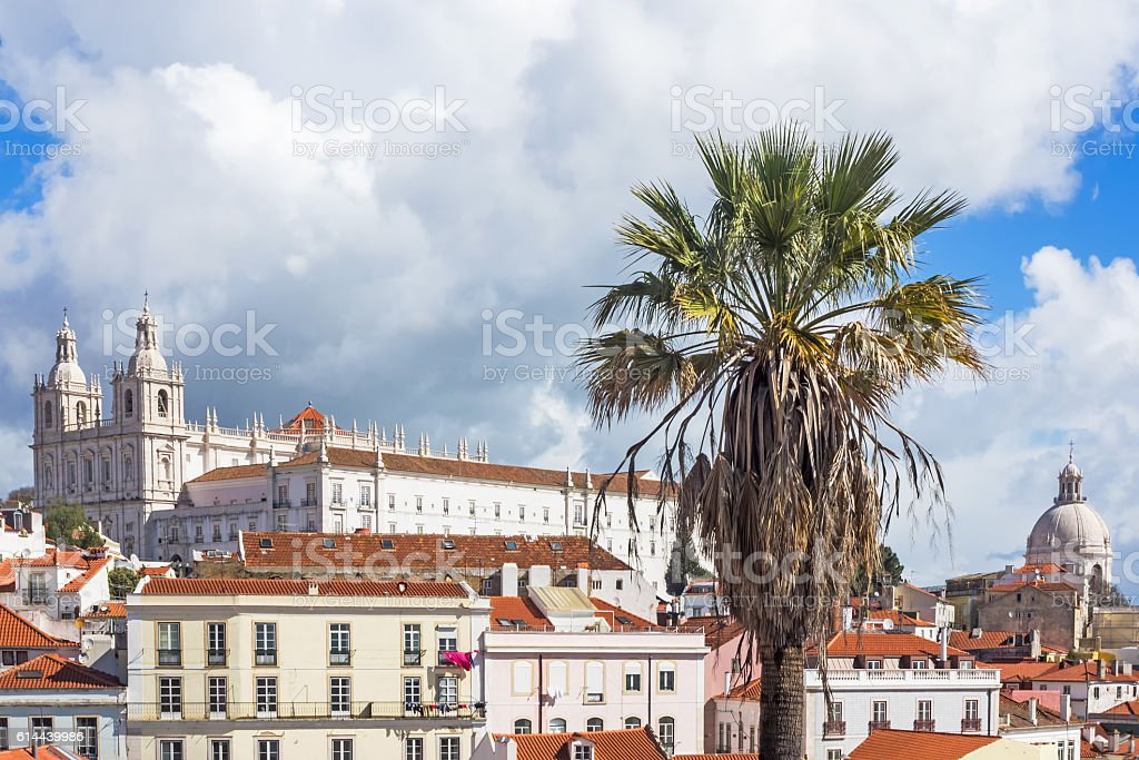 View of Lisbon, Portugal, with palm tree in the foreground stock photo