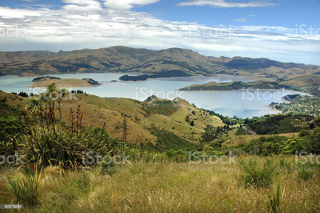 View of Lyttleton Harbor, New Zealand from a hill royalty-free stock photo