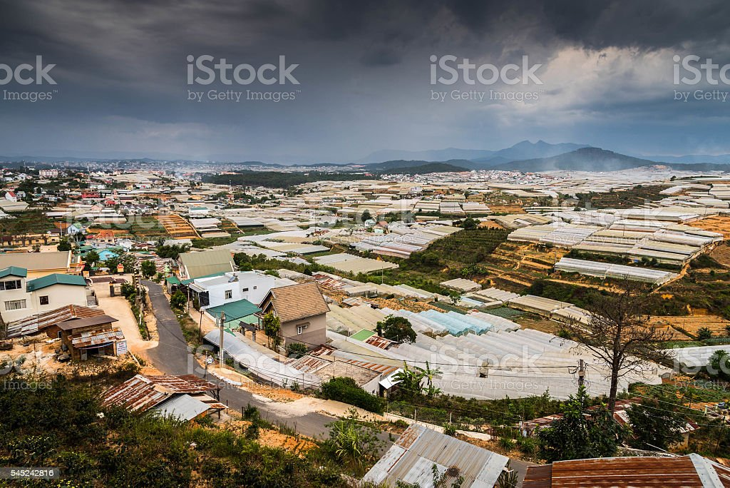 View of many greenhouses stock photo