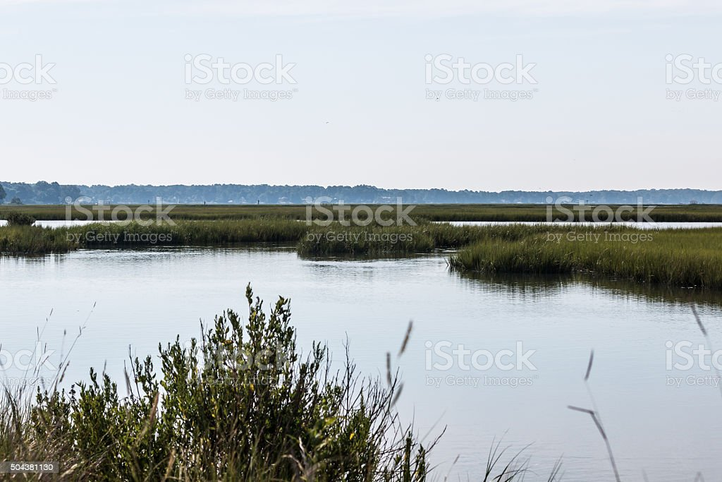 View of Marshlands at Pleasure House Point in Virginia Beach stock photo
