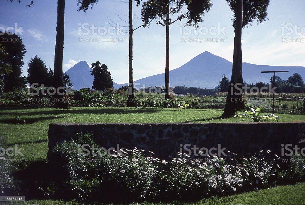 View of Mikeno Karisimbi Volcanoes from Mudende Rwanda Central Africa stock photo