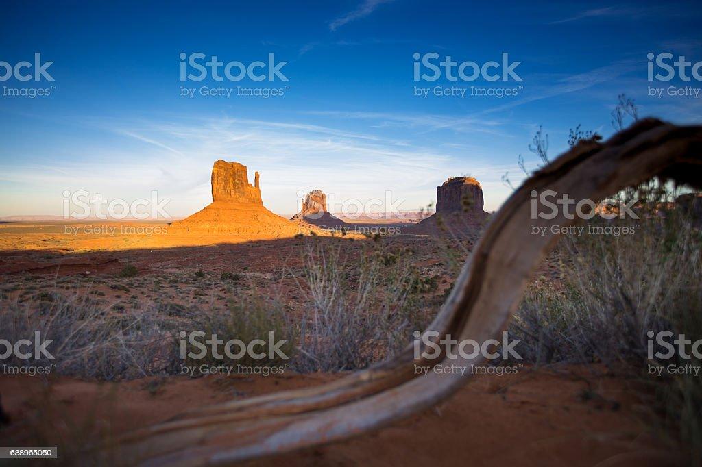 View of Monument Valley Mitten Buttes Through Fallen Branch stock photo