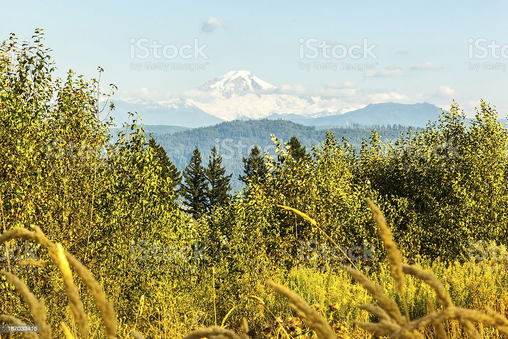 View of Mount Baker stock photo