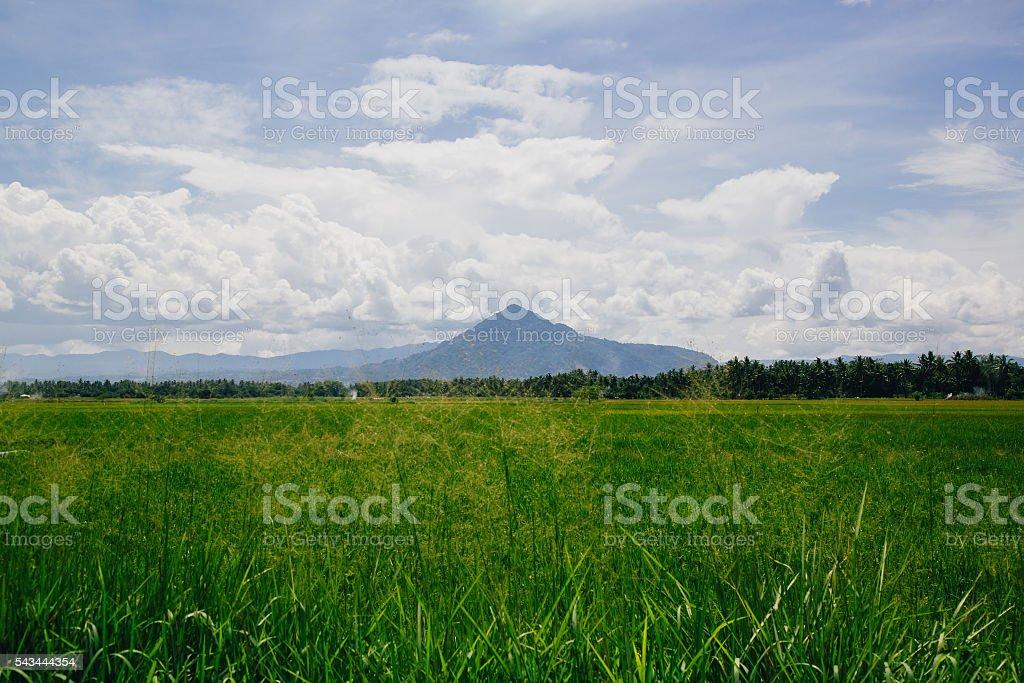 View of Mount Merapi Volcano in West Sumatra stock photo