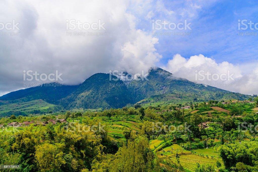 View of Mount Merapi volcano stock photo
