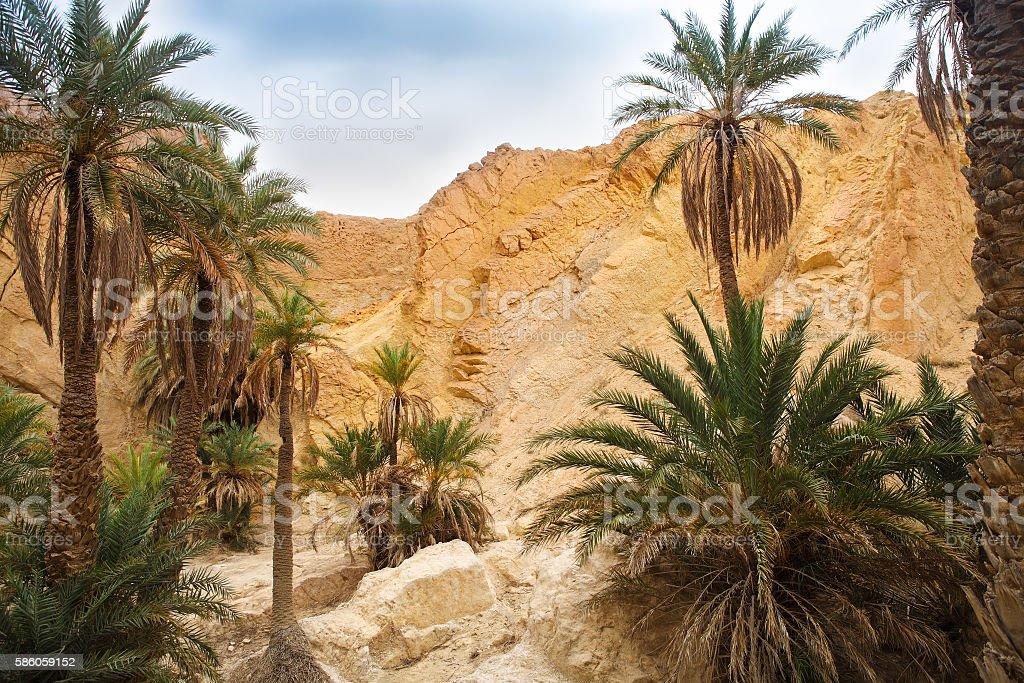 View of mountain oasis Chebika, Sahara desert, Tunisia stock photo