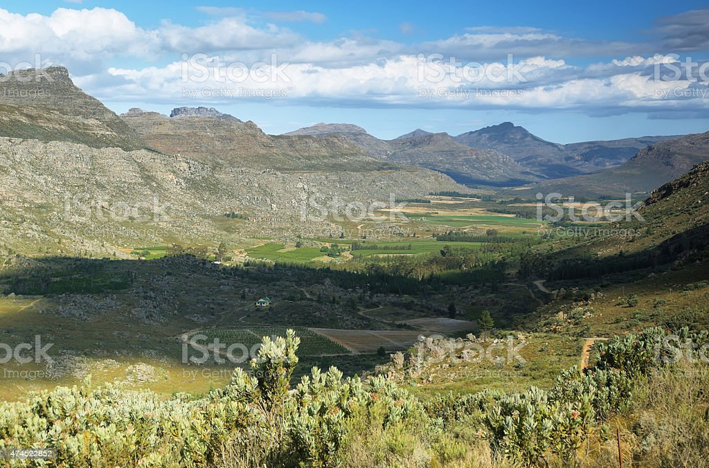 View of mountains and fields, Sourh Africa stock photo