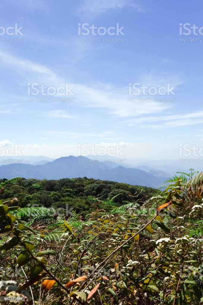 View of Mountains stock photo