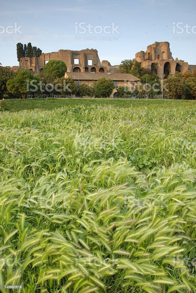 View of Palatinum Hill from Circus Maximus stock photo