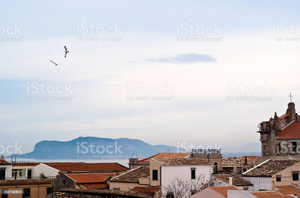 View of Palermo with roofs and seagulls stock photo