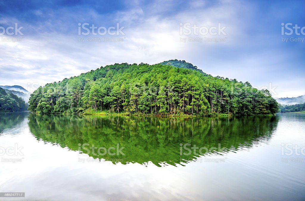 View of Pang Ung Forestry Plantation stock photo