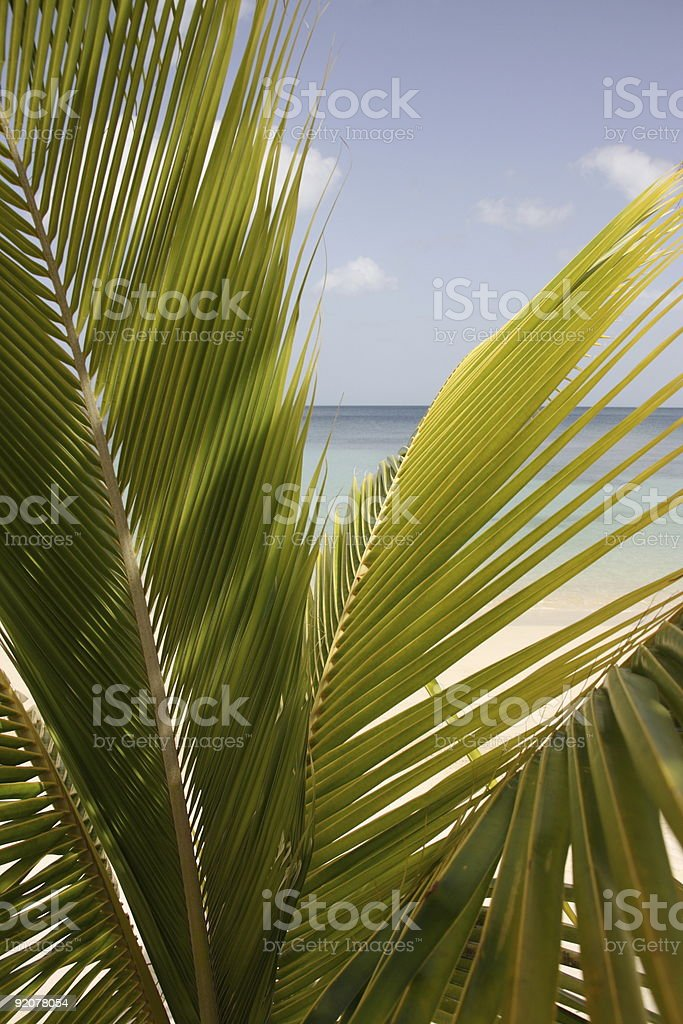 View of paradise royalty-free stock photo