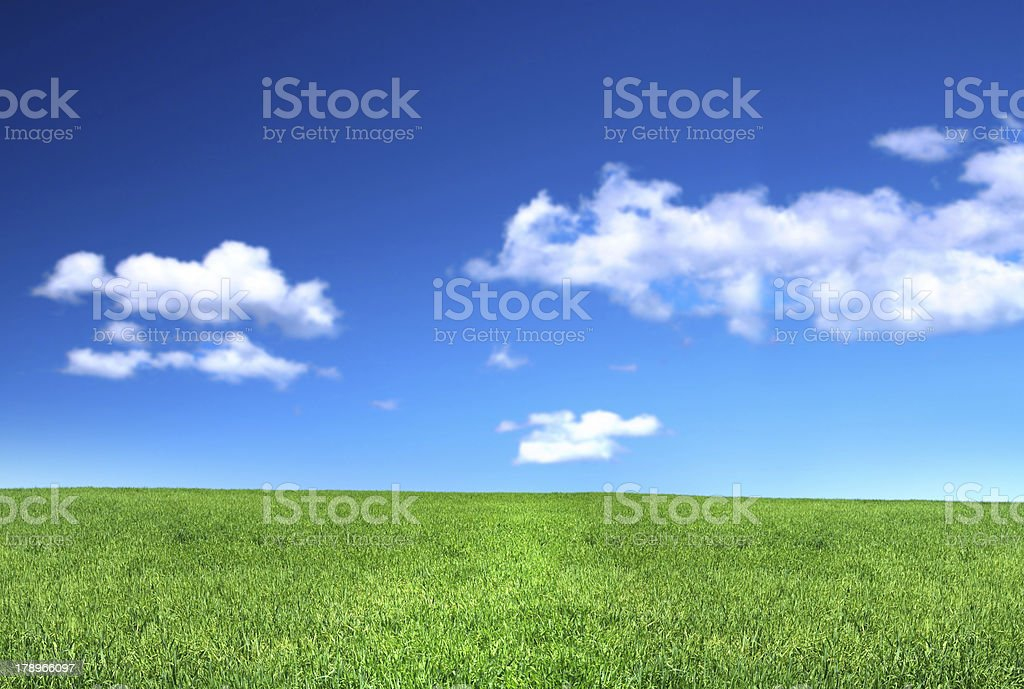 view of peaceful grassland stock photo
