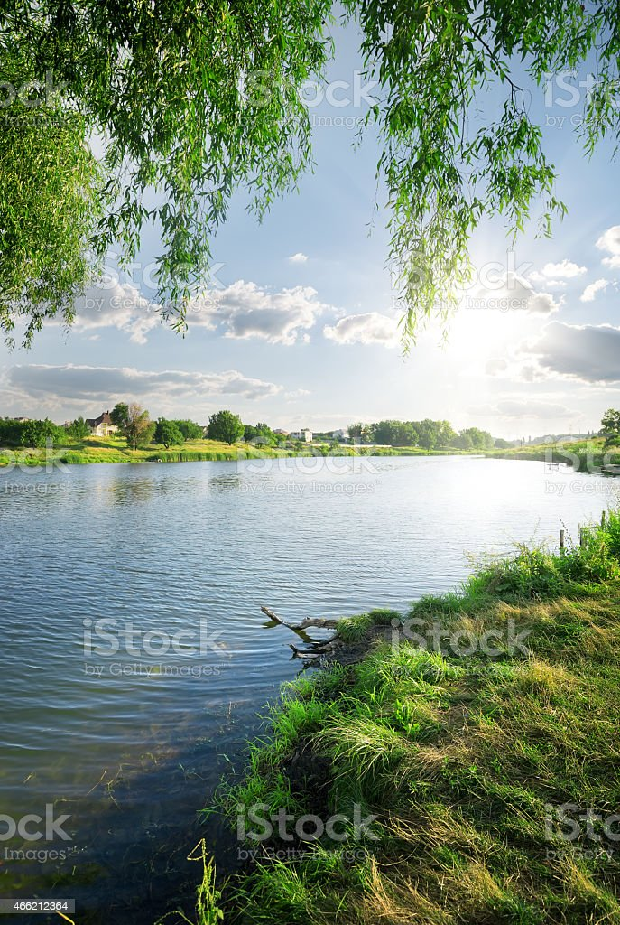 View of quiet flowing river and greenery from the grass stock photo