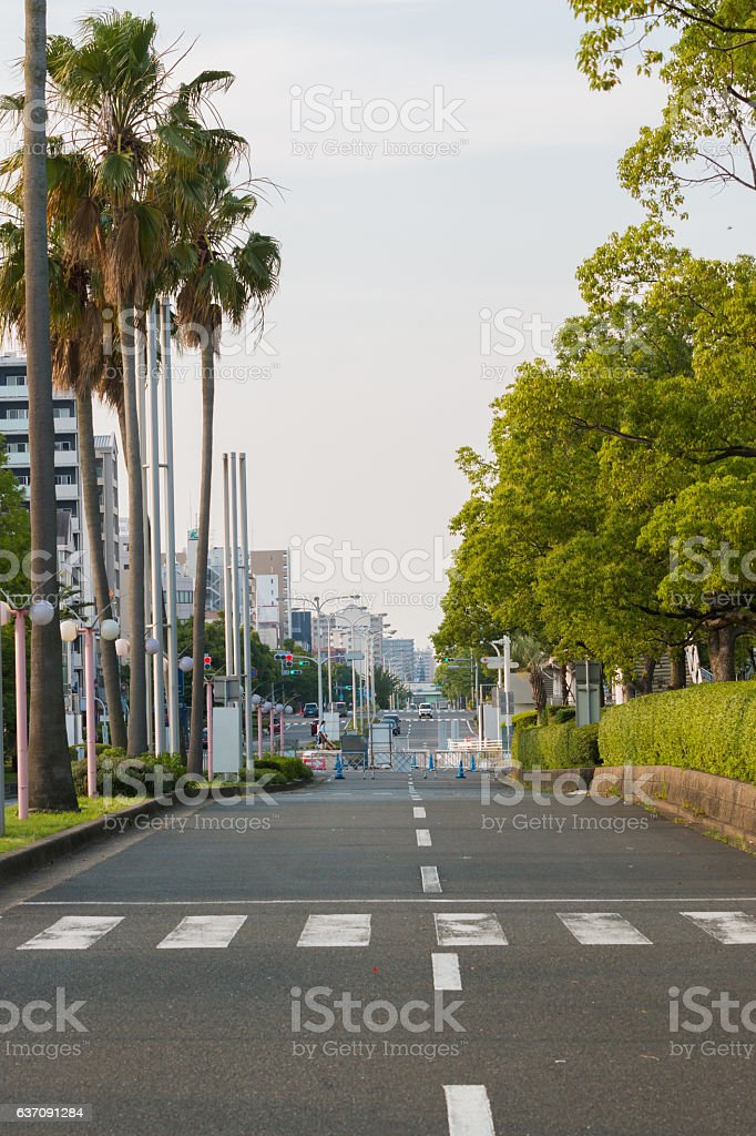View of  road in city with palm trees. stock photo