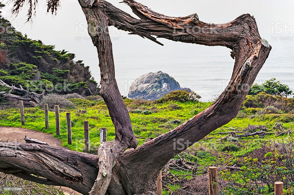 View of Rock with Hole through Branches stock photo