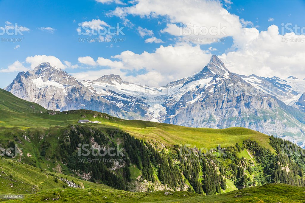 View of Schreckhorn, swiss alps stock photo