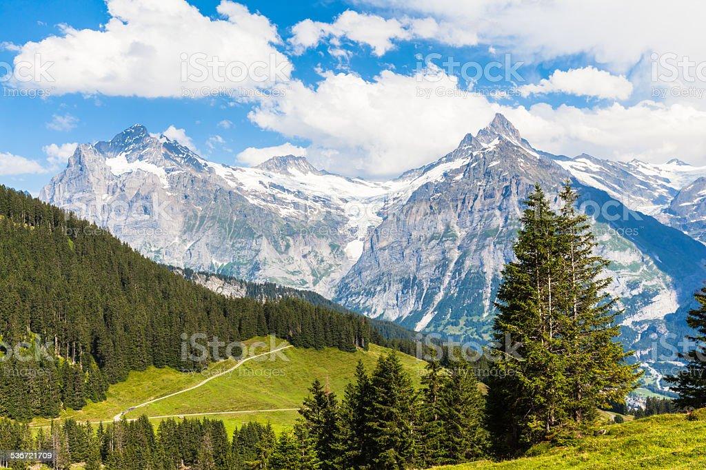 View of Schreckhorn, swiss alps stock photo