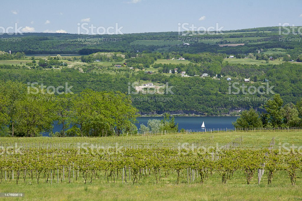 View of Seneca Lake from Castel Grisch stock photo