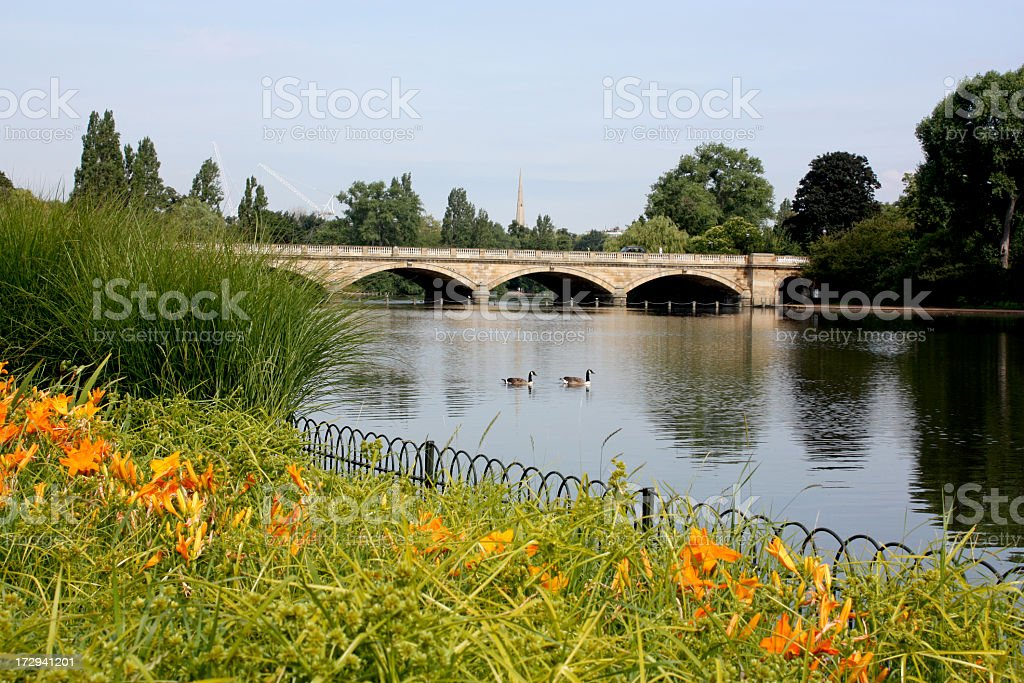 A view of Serpentine Lake in Hyde Park London with two swans stock photo
