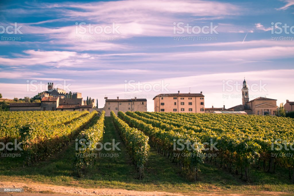 view of Soave (Italy) and its famous medieval castle stock photo