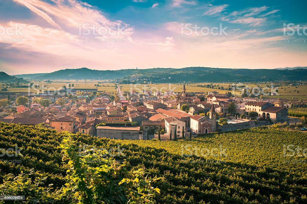 View of Soave (Italy) surrounded by vineyards. stock photo