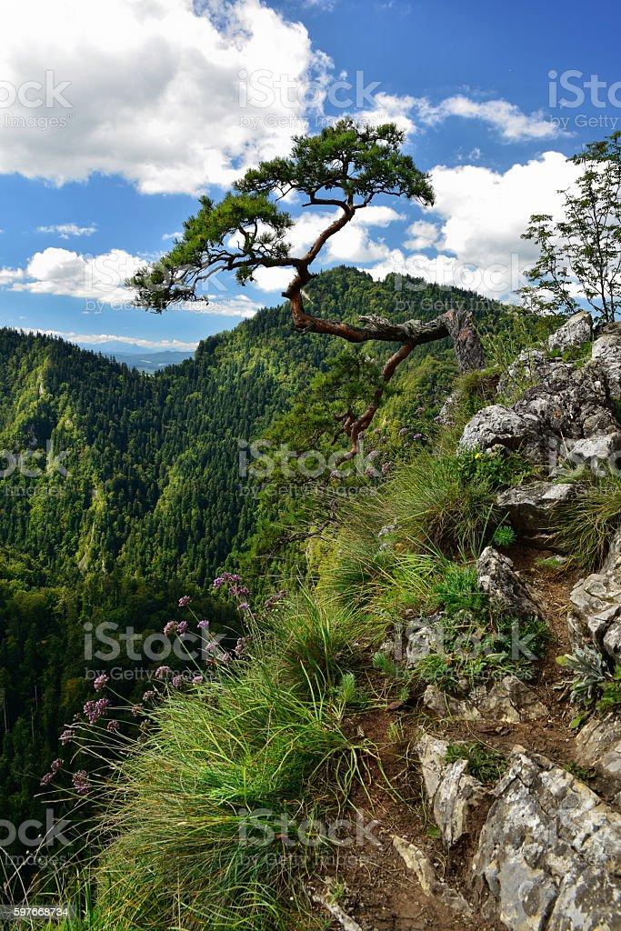 View of Sokolica peak in Pieniny mountain stock photo