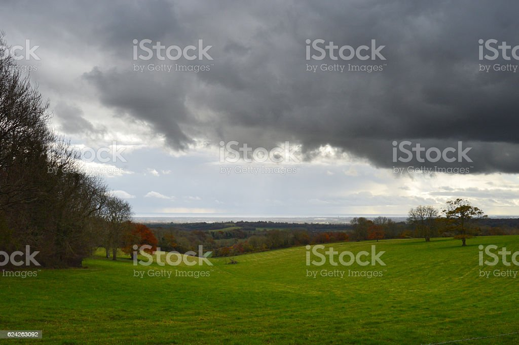 View of South Downs, Slindon Estate stock photo